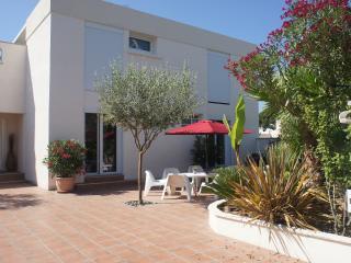 Carnon Villa T7 12 pers  200 m plage loc dim - Carnon vacation rentals