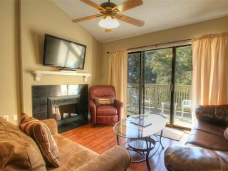 Lovely Condo with Deck and Internet Access - Myrtle Beach vacation rentals