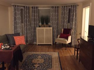 1 bedroom Condo with Internet Access in Chicago - Chicago vacation rentals