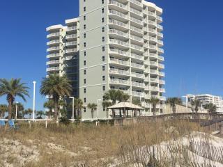 Affordable beachside 2 BR family condo - Orange Beach vacation rentals
