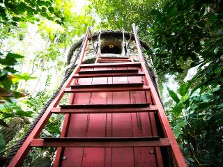 Cosy Tree House B&B w/ Aircon-15' fr Hanoi Centre - Hanoi vacation rentals