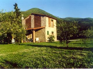 Nice 2 bedroom Farmhouse Barn in Capannori - Capannori vacation rentals