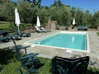 Beautiful 1 bedroom House in Buggiano - Buggiano vacation rentals