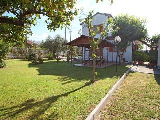 Montignoso - 577001 - Montignoso vacation rentals