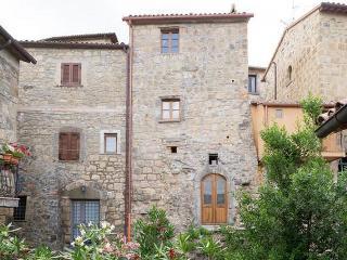 Beautiful 1 bedroom Farmhouse Barn in Civitella d'Agliano - Civitella d'Agliano vacation rentals