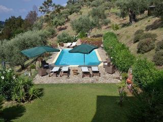 Villa Oliva, among trees, private pool and spa - Torchiara vacation rentals