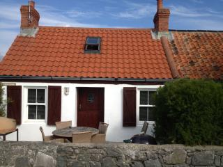 Perfect 2 bedroom Cottage in Saint Pierre du Bois - Saint Pierre du Bois vacation rentals