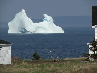 A place where time stands still, nature untouched - Salmon Cove vacation rentals