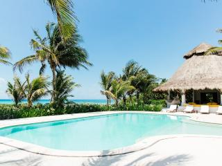 8 bedroom Villa with Television in Puerto Aventuras - Puerto Aventuras vacation rentals