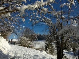 Location Gîte / Sport et Détente en Chartreuse - Miribel-les-Echelles vacation rentals
