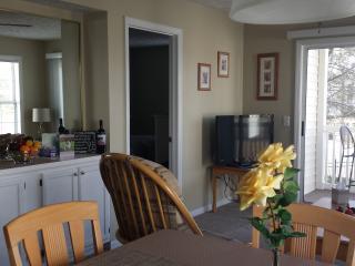Condo Villa ~ Weekly or Monthly ~ Mar / Apr or May - Myrtle Beach vacation rentals