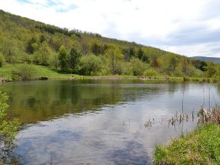 Mountain Top Retreat, Hobart NY - Hobart vacation rentals