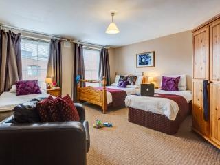 Kingfisher Service Apartment - Dublin vacation rentals