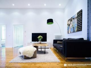 tripFavourite  COMFORT SUITE. LARGE+MODERN 85 SQM - Heidelberg vacation rentals
