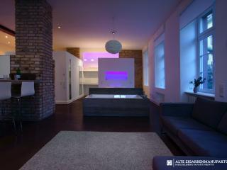 tripFavourite - LUXURY LOFT 85 SQM . WHIRLPOOL - Heidelberg vacation rentals