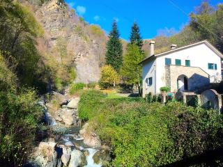 alice's home- ancient mill - Borzonasca vacation rentals