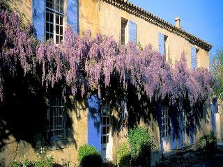 Paradou Bouches-du-Rhône, Luxury property 19p. 1 landhouse and 1 Villa, 2 private pools - Paradou vacation rentals
