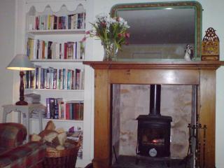 Nice 3 bedroom Cottage in Wigtown - Wigtown vacation rentals
