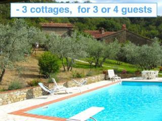 Lovely 2 bedroom Cottage in Castiglion Fiorentino - Castiglion Fiorentino vacation rentals