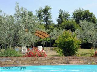 Borgo Tranquilitta - LE STELLA - Castiglion Fiorentino vacation rentals