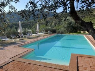 Villa Margarita -  Large Apartment - Tuscan Villa  with pool and privacy - Castiglion Fiorentino vacation rentals