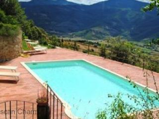 Villa Castalini - - Large Tuscan Family Villa, Private Pool, Volleyball and views - Castiglion Fiorentino vacation rentals