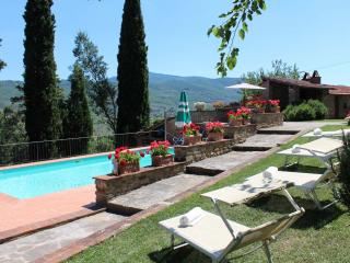 Casa Usignoli (the nightingale) - 5 Bedroom  Spacious Family Tuscan Villa with Private Pool, - Castiglion Fiorentino vacation rentals