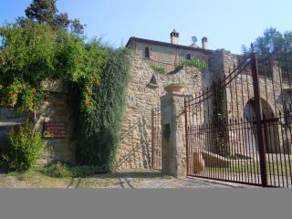 Villa maria, Alvi - Cottage apartment in Historic Tuscan Villa, Perfect family getaway - Castiglion Fiorentino vacation rentals