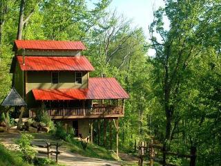 Enchanting, Kid Friendly, Romantic, Indoor Slide - Asheville vacation rentals