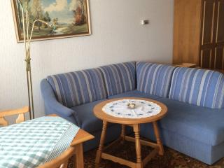 Nice Condo with Housekeeping Included and Television - Bad Mitterndorf vacation rentals