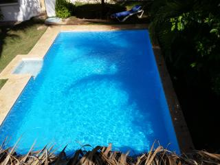 Villa with huge pool 2 blocks from beach, 4 bdrms - Bavaro vacation rentals