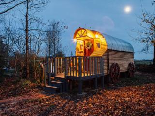 Wagon in the woods - Medstead vacation rentals