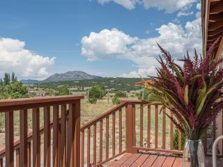 Gorgeous Mountain Retreat -Albuquerque - Santa Fe! - Edgewood vacation rentals