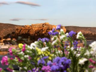 Apt in Athens with heated Pool & Acropolis view - Athens vacation rentals