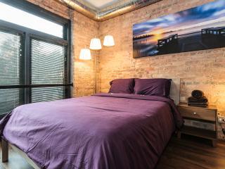 Michigan Avenue Dream Sleeps 4 - Chicago vacation rentals