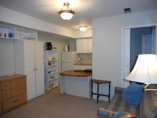 . One Bedroom Mid town Parksville - Parksville vacation rentals