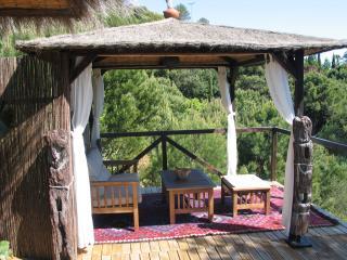 Casa Pino - Casares vacation rentals