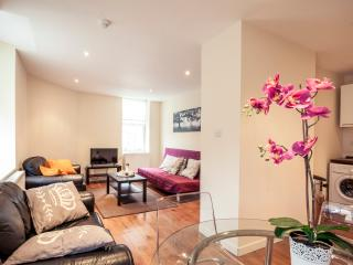 City Stay Aparts - Cozy Apartment in Camden Town - London vacation rentals