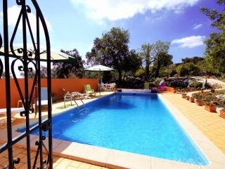 Comfortable Condo with Internet Access and A/C - Loule vacation rentals