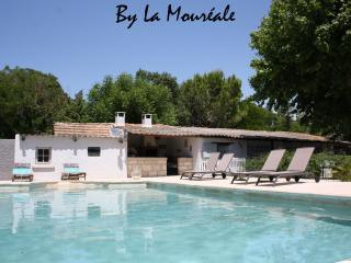 Nice Cottage with Internet Access and A/C - Caumont-sur-Durance vacation rentals