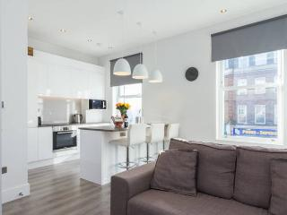 Generous Spaces Apartments - modern 2 bed - London vacation rentals