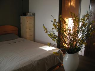 Sime's Guest House No.2. Down Town - Hvar vacation rentals