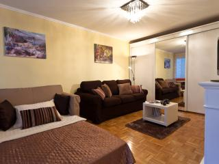 Teya's Apartment no.1: All in One - Ljubljana vacation rentals