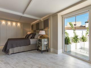 Modern open plan attic with terrace in the center - Seville vacation rentals