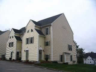 Gorgeous condo on Lake Winnipesaukee - Weirs Beach vacation rentals