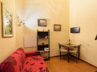 Florence modern loft close Uffizi - Florence vacation rentals