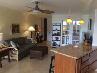 Lovely Condo with Internet Access and Elevator Access - Napili-Honokowai vacation rentals