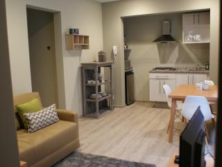 Cute 1 Bedroom Apartment in La Condesa - Mexico City vacation rentals