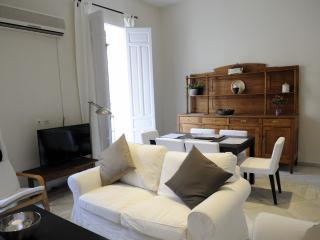 HUDGE 3 BEDROOMS APARTMENT IN THE CENTER OF CITY - Seville vacation rentals
