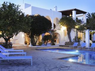 Awesome Lux Villa w/ pool & spring-5BR-5BT-Seaview - Ibiza Town vacation rentals